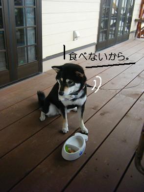 うにのしおから(05 05)19