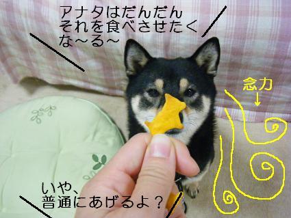 念力美月(11 08 08)