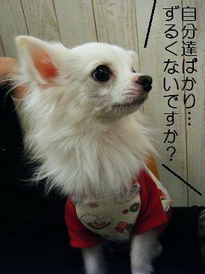おでかけ②(02 17)5