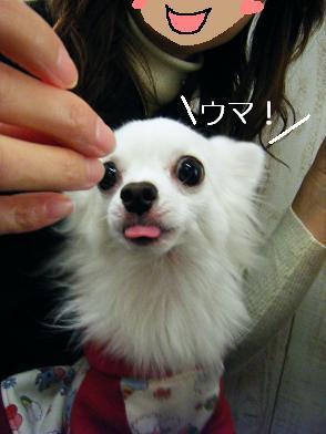 おでかけ②(02 17)7