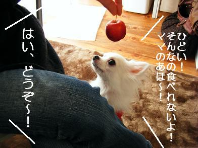 おでかけ③(02 17)2