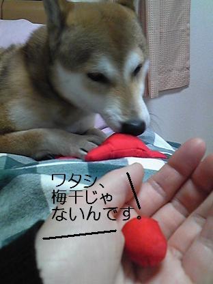 おまけ(03 22)