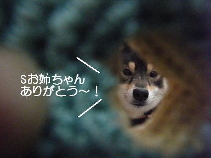 どーなっつ(02 14)
