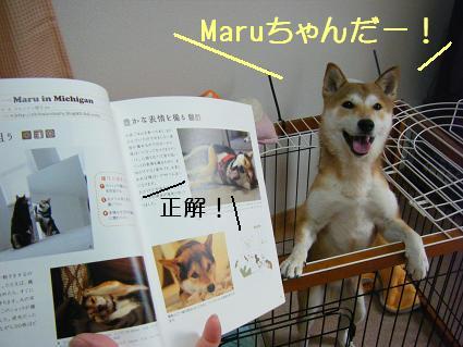 Maruちゃんだ(05 31)4