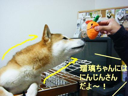 にんじんさん(04 01)1