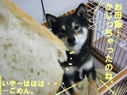 パン(0610)1
