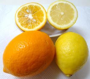 004_lemon.jpg