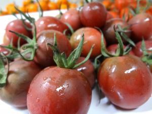 007_tomato.jpg