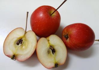 020_apple.jpg