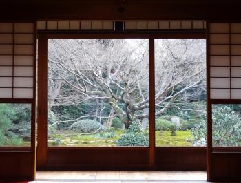 164_kyoto.jpg