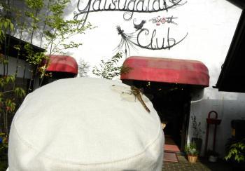 yatsugatake club4