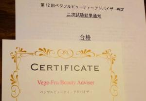 VFBA005_