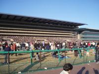 ジャパンカップ1