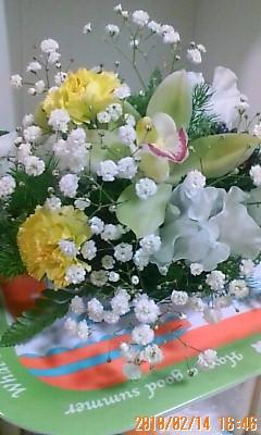 綺麗な花2