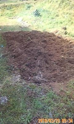 耕した菜園