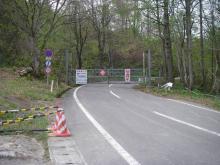IMGP2897-1.jpg