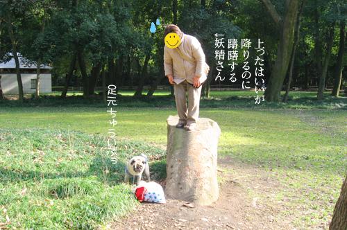 090312bunta_3.jpg