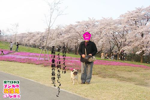 090415bunta_2.jpg