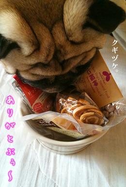 091124bunta_5.jpg