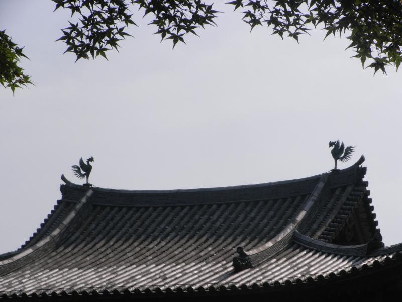 090619-6.jpg