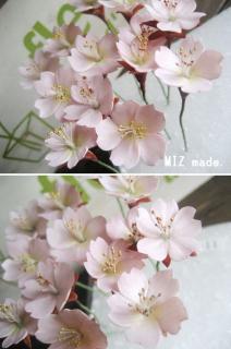 桜(花パーツ)