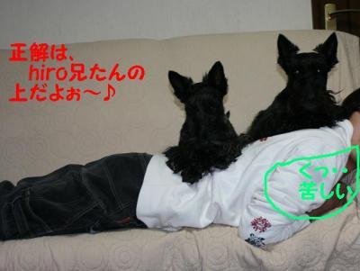 a_20090122181957.jpg