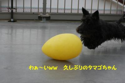 a_20090705204541.jpg