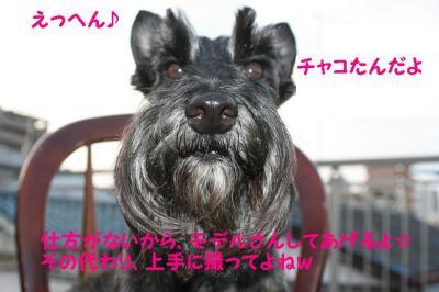 a_20090928221954.jpg