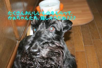 a_20091008221949.jpg