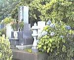 200508haka004.jpg