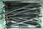 20070530cp7.jpg