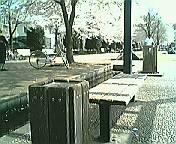 koenhaizara03.jpg
