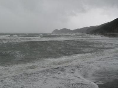 200901245.jpg