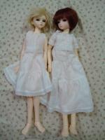 white1_20080829213728.jpg
