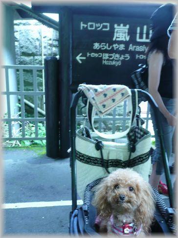 京都・トロッコ列車