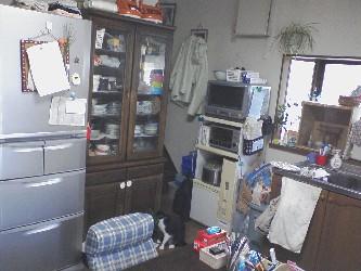 20090615living2.jpg