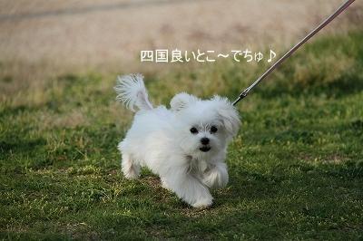 豊浜町夕映え公園6-1