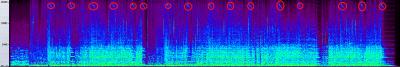 Fate OP 波形 高音 超高音