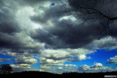 空 雲 枯れ木 風景