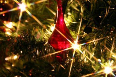 イルミネーション クリスマスツリー 光 ライト フィルター