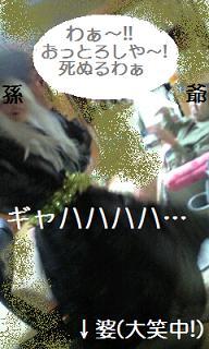091027_0001.jpg