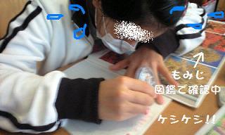 091123_0013.jpg