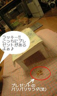 lucky4_0006.jpg