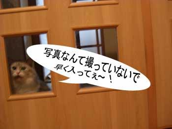 内ドア-2