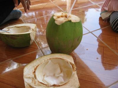 ココナツ1