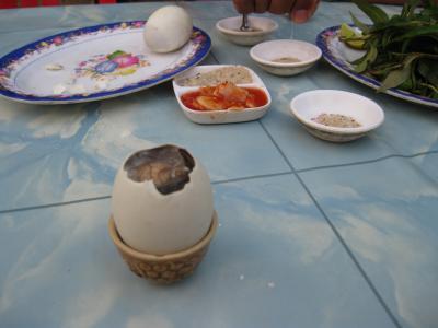 ひよこ卵1