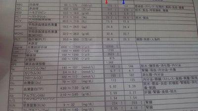 血液検査27日28日比較