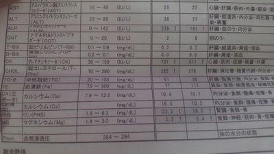 血液検査 27日28日比較