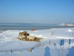 2010.02.18;冬海 007