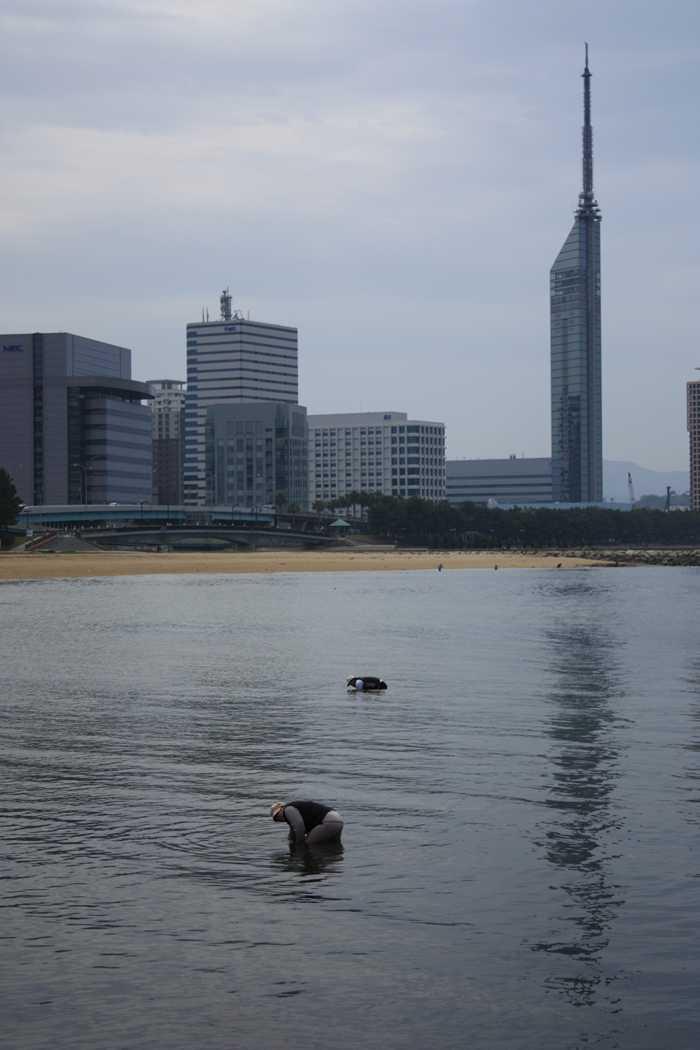 ももち浜の潮干狩り